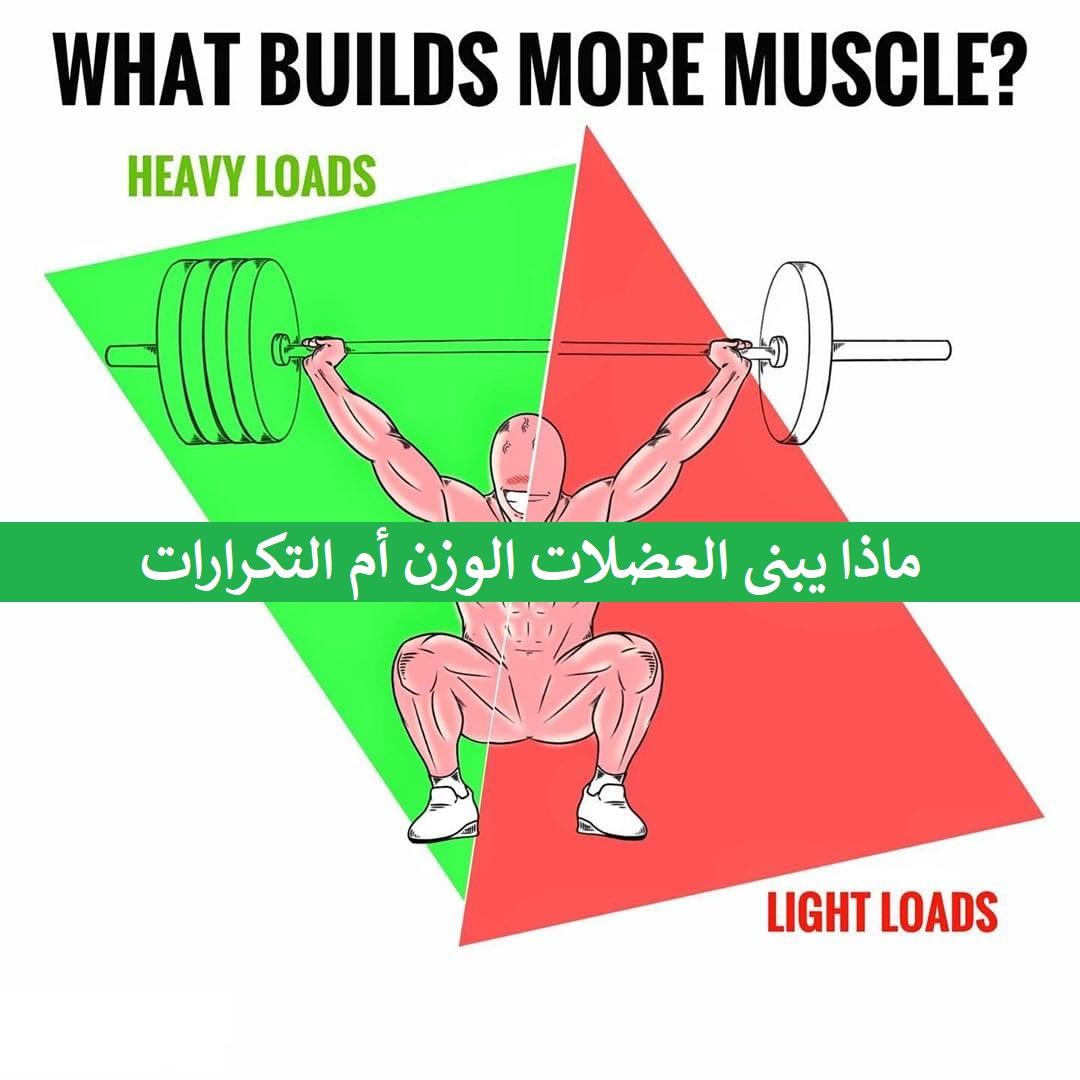 ماذا يبنى العضلات الوزن أم التكرارات