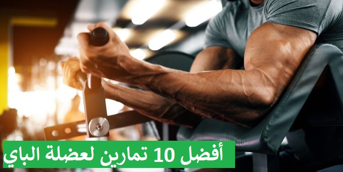 https://musclesbuilding.net/أفضل-10-تمارين-لعضلة-الباي/