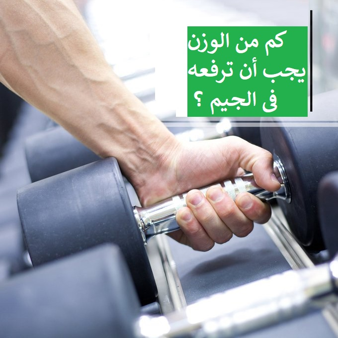 https://musclesbuilding.net/كم-من-الوزن-يجب-…ترفعه-فى-الجيم-؟/