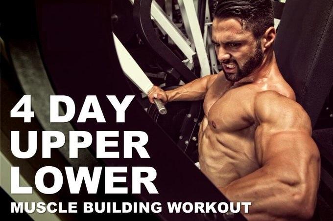 https://musclesbuilding.net/جدول-تمارين-علوي-وسفلي-upper-lower/