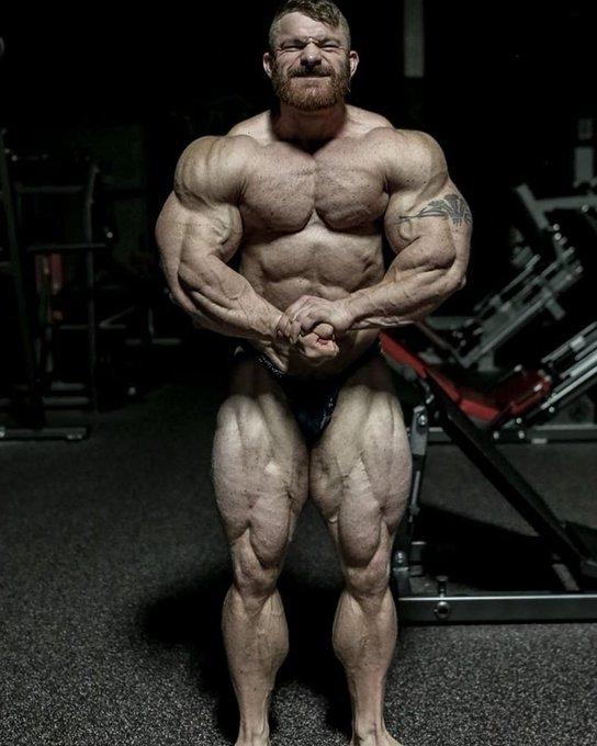 https://musclesbuilding.net/التغذية-والتمارين-والمكملات/