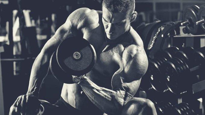 https://musclesbuilding.net/اسرار-تضخيم-عضلة…ايسبس-والترايسبس