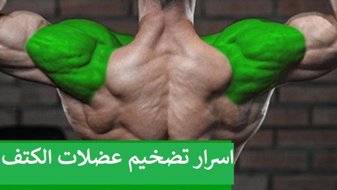 https://musclesbuilding.net/اسرار-تضخيم-عضلات-الكتف/