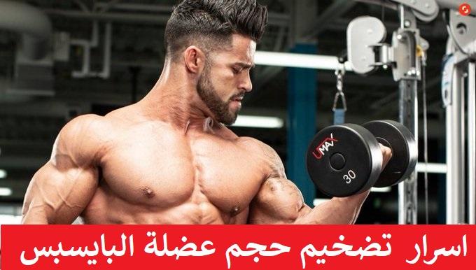 https://musclesbuilding.net/اسرار-تضخيم-حجم-عضلة-البايسبس