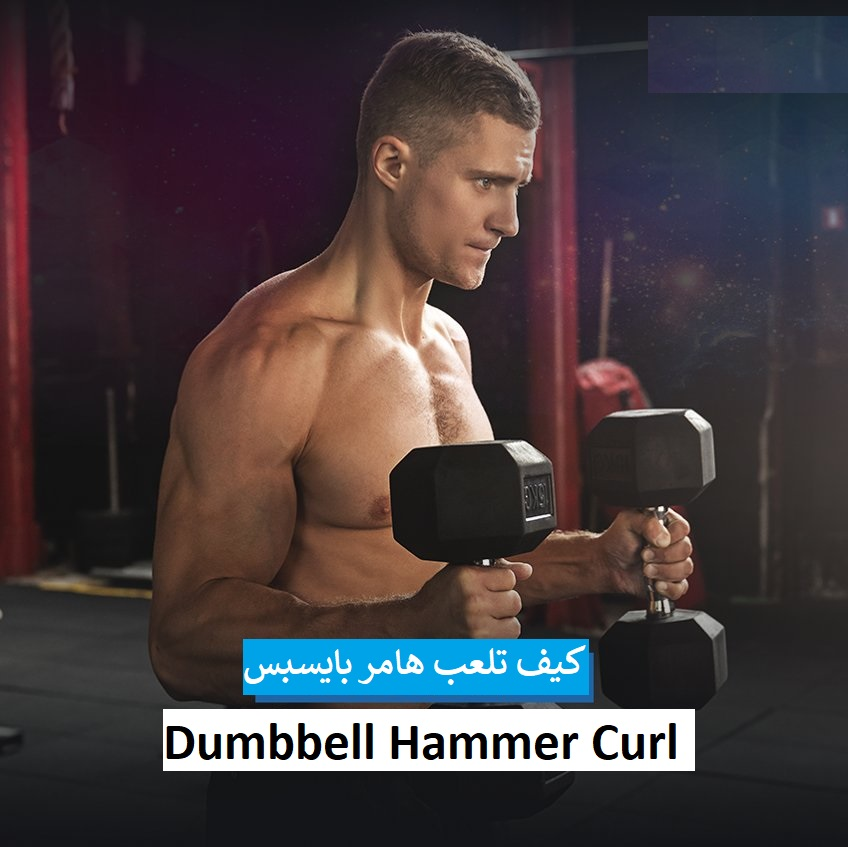 https://musclesbuilding.net/dumbbell-hammer-curl/