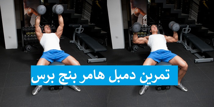 https://musclesbuilding.net/تمرين-دمبل-هامر-بنج-برس/