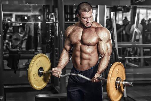 https://musclesbuilding.net/%d8%a7%d8%b3%d8%b1%d8%a7%d8%b1-%d8%aa%d8%b6%d8%ae%d9%8a%d9%85-%d8%b9%d8%b6%d9%84%d8%a9-%d8%a7%d9%84%d8%a8%d8%a7%d9%8a-%d9%84%d9%84%d9%85%d8%ad%d8%aa%d8%b1%d9%81%d9%8a%d9%86/