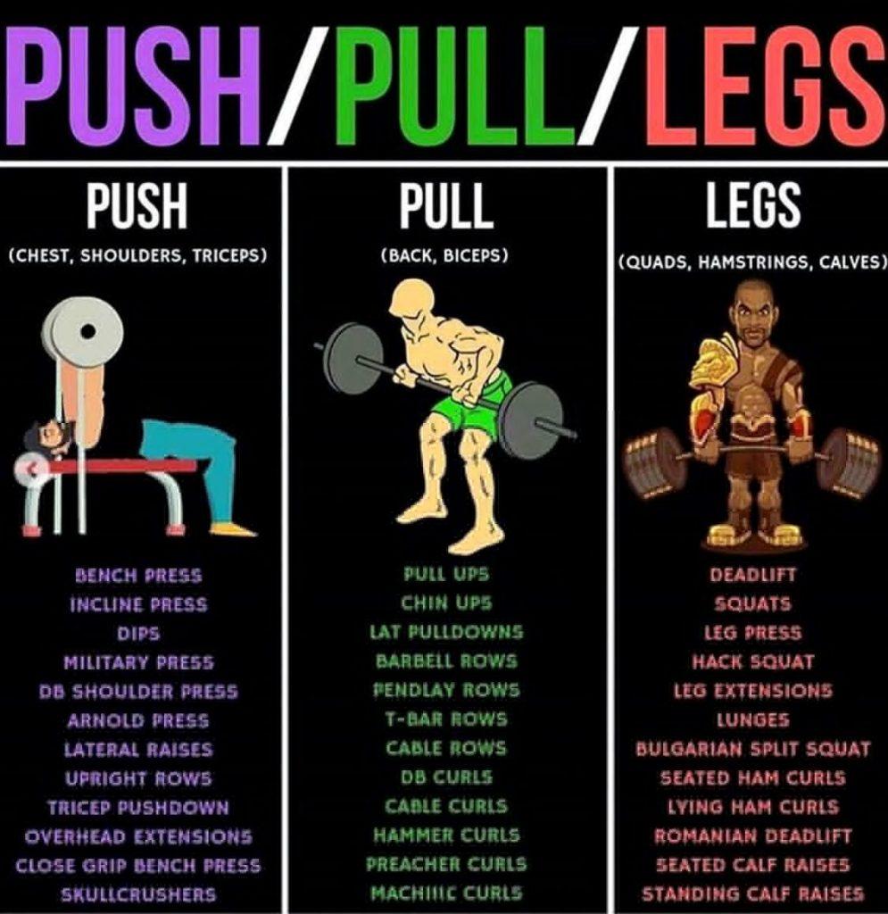 جدول تمارين الدفع و السحب والرجل push pull leg